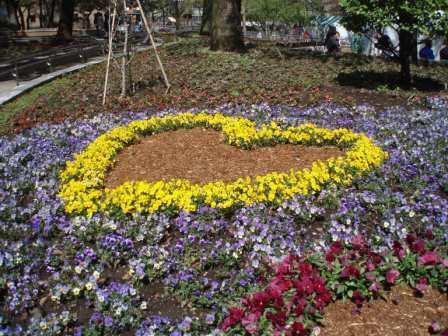 tulipfair1.JPG